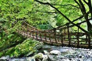 徳島のデートスポット 祖谷のかずら橋