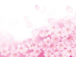 ◇何を重視?結婚相手を選ぶ時◇徳島地域密着のEMI(イーエムアイ)婚活結婚相談所でお見合い