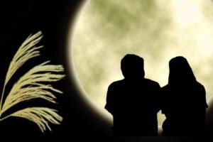 徳島婚活◇お見合いのコツ男性編⑩地域密着EMIイーエムアイ婚活結婚相談所でお見合い