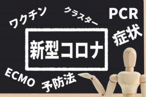 徳島婚活◇コロナ禍の今婚活とは⑥地域密着EMIイーエムアイ婚活結婚相談所でお見合い