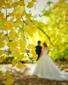 徳島婚活◇年齢を気にして婚活をためらっている人へ④地域密着EMIイーエムアイ婚活結婚相談所でお見合い
